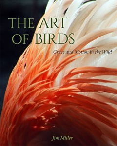 The Art of Birds: Grace and Motion in the Wild by by Jim Miller